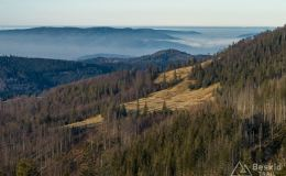Widoki  z Przełęczy Pawlusiej