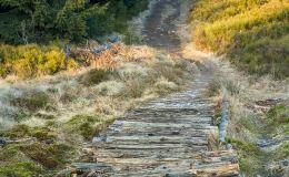 Na żółtym szlaku  z Rysianki na Romankę