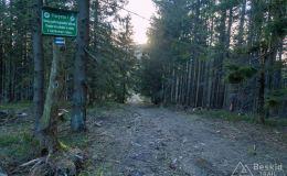 Niebieski szlak z Romanki na Kotarnicę