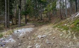 Podjazd czarnym szlakiem z Żabnicy -Skałka na Halę Boraczą