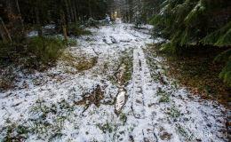 Przełęcz Bory Orawskie