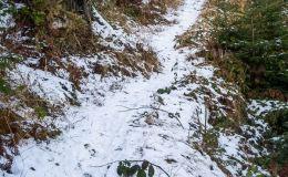 Niebieski szlak z Hali Lipowskiej do Złatnej