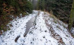 Trail/singiel z Zapolanki na Halę Cukiernica (pod Redykalnym Wierchem)