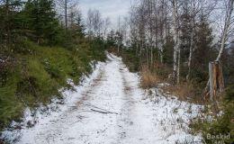 Zielony szlak Gibasy - Łysina