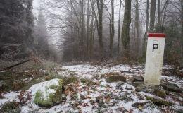 Czerwony szlak z  Przełęczy Przegibek na Rycerzową