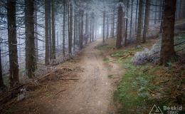Niebieski szlak na Rycerzową