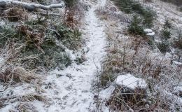 Niebieski szlak z Rycerzowej na Przełęcz Przegibek