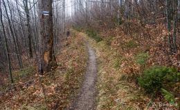 Niebieski szlak na Bendoszkę Wielką
