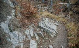 Zielony szlak z Przełęczy Przegibek do Rycerki Górnej Kolonia