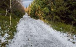 Początek czerwonego szlaku z Magurki Wilkowickiej