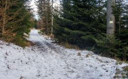 Żółty szlak z Międzybrodzia Bialskiego na Magurkę Wilkowicką