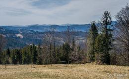 Widok spod Skały na południe (Beskid Śląski)