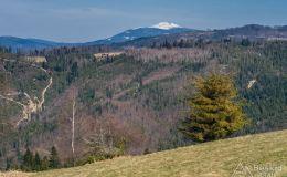 Widok na wschód z Hali Magura