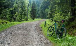 Szlak rowerowy na Przehybę - początek z doliny