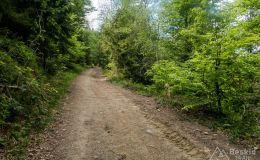 Na szlaku rowerowym z Rzek na Jaworzynę Kamienicką