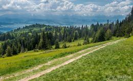 Na czerwonym szlaku z Kiczory na Przełęcz Knurowską