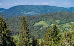 Widok z podjazdu z Ochotnicy Dolnej-Młynne przez Strzelowskie na Gorc