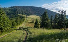 Podjazd z Sopotni Wielkiej na Rysiankę
